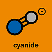 Cyanide anion chemical structure, illustration