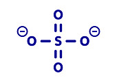 Sulfate anion chemical structure, illustration