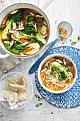 Chicken Wonton Noodle Soup