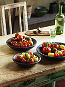 Tomatoes, still life