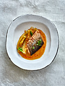 Char fillets with a fennel medley in a massaman broth