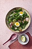 Asiatischer Spinatsalat mit Ei und Radieschen