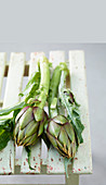 Artichokes with spikes