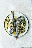 Israeli gilt-head bream with an olive and avocado salsa