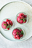 Raspberry and rose sorbet with pistachio nuts