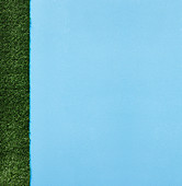 A light-blue background with artificial grass