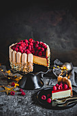 Lady finger limoncello raspberry mousse cake
