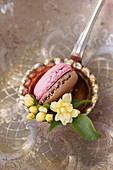 Macarons and rose buds