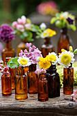 Blüten vom Hahnenfuß, Wucherblume, Flieder und Rotdorn in braunen Flaschen