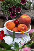 A fruit bowl with apricots, peach and sweet cherries