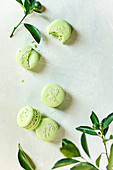 Overhead image of 5 lime macarons surrounded by baby limes and lime branches