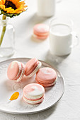 Plate of pink and white macarons with 2 glasses of milk and sunflowers in the background
