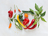 Various types of peppers and chillies