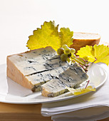 Noble mushroom cheese with vine branches on a plate