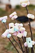 Marshmallows am Spiess