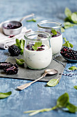 Panna cotta with basil and blackberry sauce (keto cuisine)