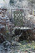 Stuhl am Beet mit gefrorenen Stauden