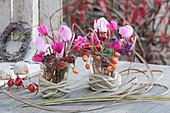 Kleine Sträuße aus Alpenveilchen, Hagebutten, Zieräpfeln und Beeren vom Liebesperlenstrauch