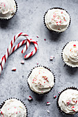 Peppermint chocolate cupcakes with candy cane buttercream frosting