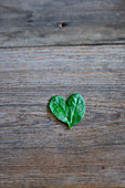 A spinach-leaf heart on a wooden surface