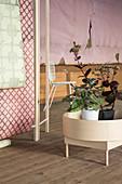 Kalanchoe im modernen Pflanzenständer vor verfallener Wand