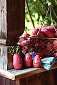 Auf rote Kartoffeln gemalte Gesichter mit Rosmarin