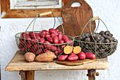 Bunte Kartoffeln in Metallkörben auf einer rustikalen Holzbank