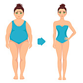 Woman before and after weight loss, illustration