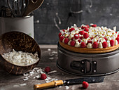 Sponge cake with fresh raspberries and coconut shavings