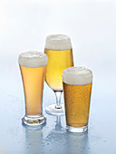 Various type of light beers in glasses