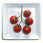 Vine tomatoes on a square plate