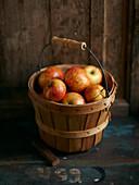 Frische Äpfel im Eimer