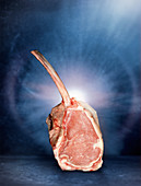 Raw tomahawk veal steak in front of a blue background