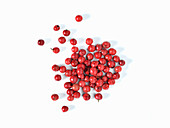 Red pepper berries on a white background