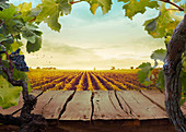 Wooden table. Spring design with vineyard and empty display. Space for your montage