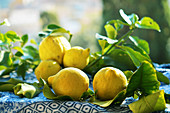 Freshly picked lemons with leaves in the sun on a garden table