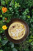 Hähnchenbrustfilet in Käsesauce mit Pilzen