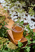 Herbal beverage with anise star in glass cup on wooden surface in garden