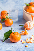 Clementines with leaves on blue background