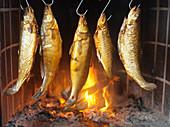 Smoked fish on hooks
