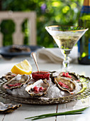 Oysters on ice served with mignonette sauce