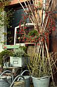 Herbst Arrangement mit Kranz aus Hagebutten, Zink-Gießkannen und Zinkeimer mit Zweigen