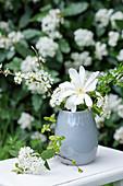 Weiße Blüten von Sternmagnolie, Schlehe, Schneeball und Weißdorn
