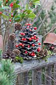 Winterliche Deko auf dem Gartenzaun: Pinienzapfen mit Skimmien-Beeren geschmückt