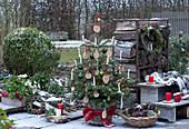 Nordmanntanne geschmückt mit Holzscheiben, Christbaumkugeln, Lichterkette und Kerzen, Korb mit Zapfen