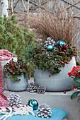 Weihnachtliches Topf-Arrangement mit Scheinbeeren, Teppich-Fetthenne 'Fuldaglut', Tripmadam und Herbstsegge, Kugeln und Zapfen als Dekoration