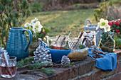 Gläser mit Punsch im Kupfer-Tablett, Christrosen in Mooskugel, Zapfen und Kanne