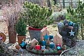 Adventsdekoration mit Kerzen, Holzstücken, Sternen, Zapfen und Tannenspitzen auf Tablett, Korb mit Zapfen
