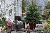 Weihnachtsterrasse mit Nordmanntanne als Weihnachtsbaum, Korbsessel mit Fell als Sitzplatz