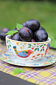 Fresh damsons in a porcelain bowl